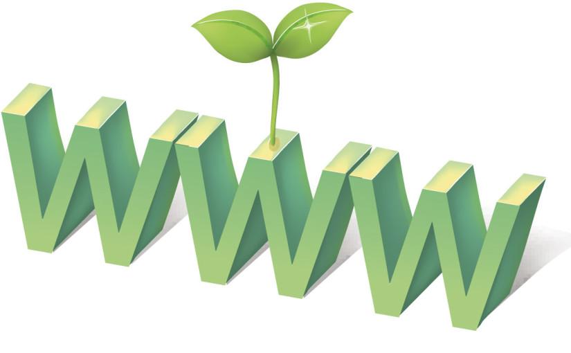 grow your web presence